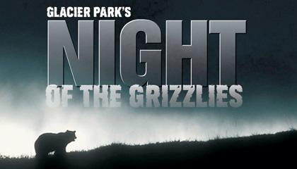 GLACIER PARK'S NIGHT OF THE GRIZZLIES | American Public