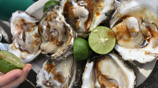 Pati harvests oysters and eats them right out of the water in Altata